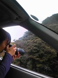 2月27日カワセミ探し.jpg