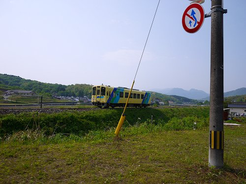 P1040768.jpg