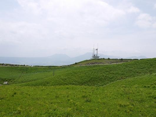 P1120606.jpg