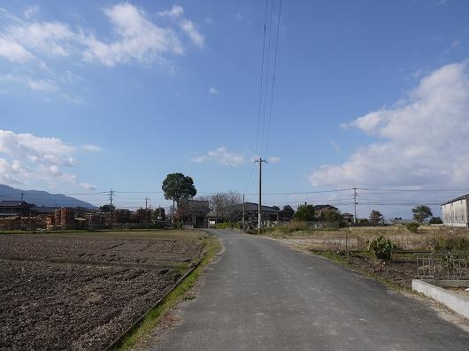 P1150503.jpg
